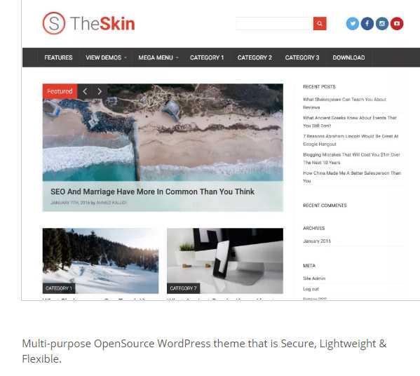 skin szablon wordpress