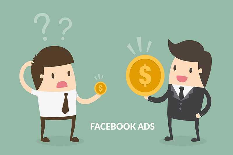 weryfikacja domeny facebook