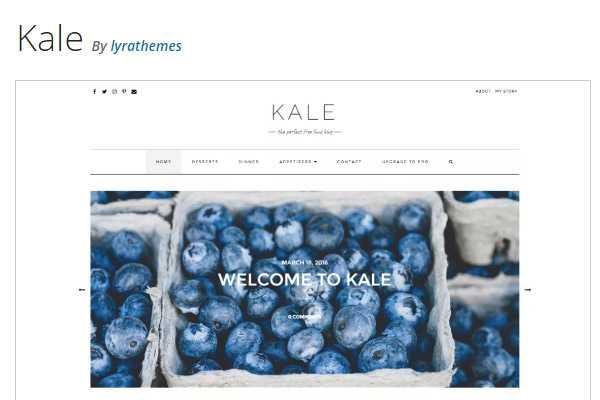 kale wordpress theme