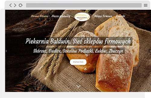 projekt wordpress baldwin