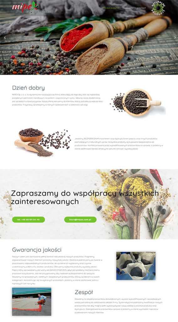 strony internetowe na wordpress portfolio
