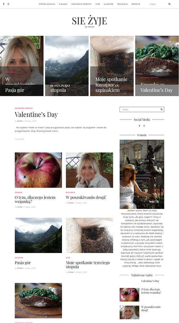 strony internetowe blog na wordpress